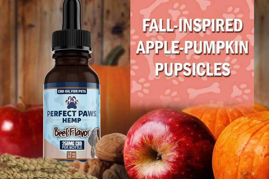 Homemade Dog Treats - Apple Pumpkin Pupsicles