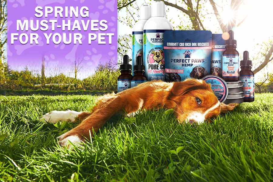 Pet Products - Must Haves