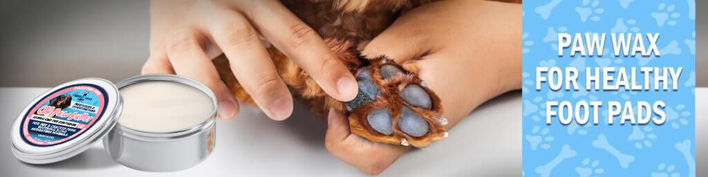 Paw Wax for Healthy Pet Paws