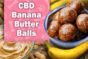 Dog Treat Recipes with CBD - Banana Butter Balls