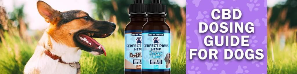 CBD Dosing Chart - CBD Oil Dosage for Dogs