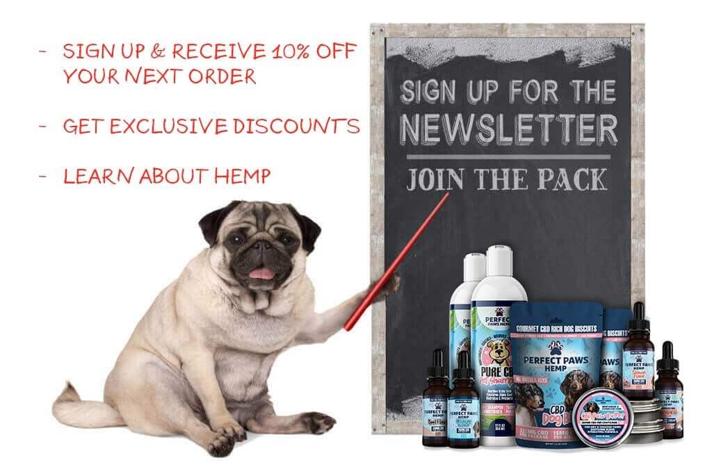 CBD Newsletter Signup