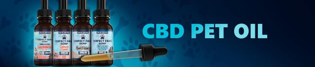 CBD Pet Oil for Dogs and Cats
