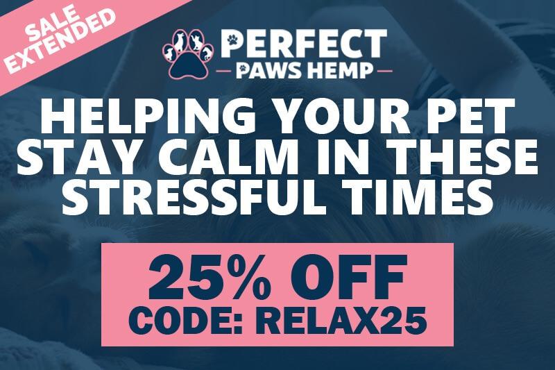 Premium CBD Products for Pets