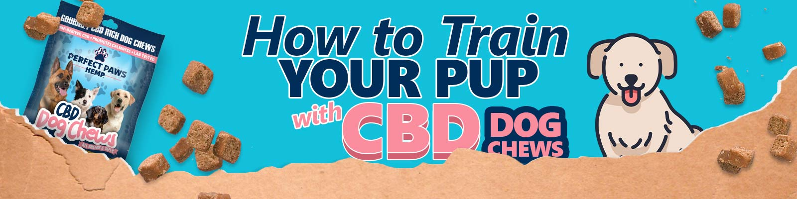 How to train your pup with CBD dog chews banner