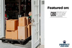 CBD Today Perfect Paws Hemp