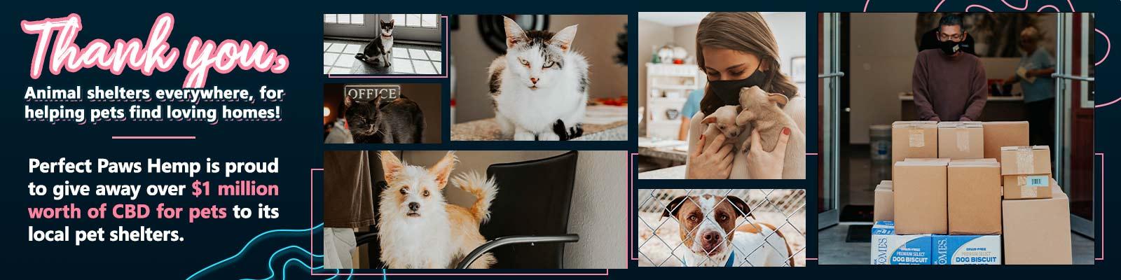 Pet CBD Products Donation