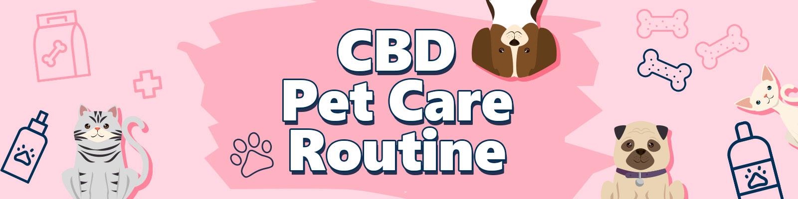 CBD Pet Care Routine